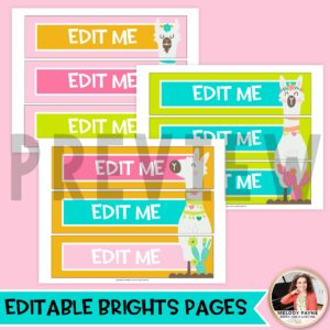 Llamas, Cacti, & Shiplap Sterilite Drawer Labels – Editable