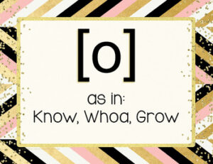 Choral Vowel Sounds Posters {IPA Chic & Glam}